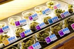 sparc-pot-dispensary-2